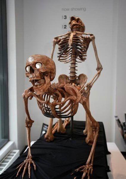 组图:纽约性爱骷髅展引发轰动市民褒贬不一