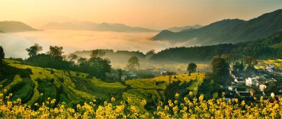江岭一号观景台下方风景:油菜花、云海、古村