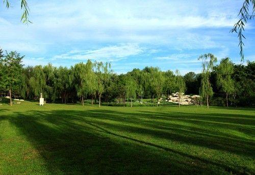 运动型公园设计