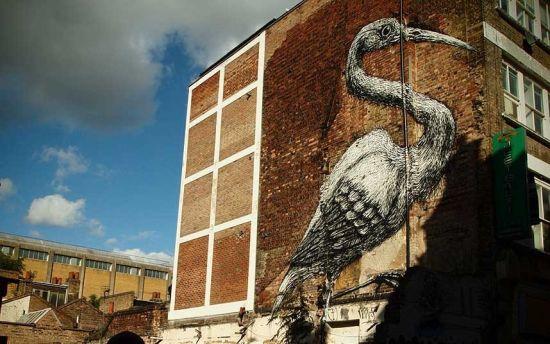 伦敦汉伯里街展示着伦敦东区最著名的街头涂鸦,图为来自于比利时涂鸦大师 ROA高30英尺(约9米)的鸟类涂鸦作品