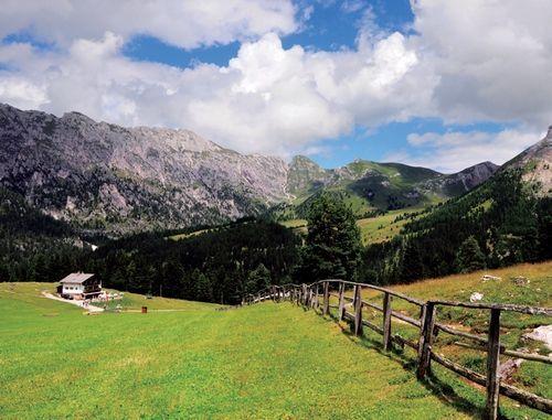 漫山遍野的绿草地