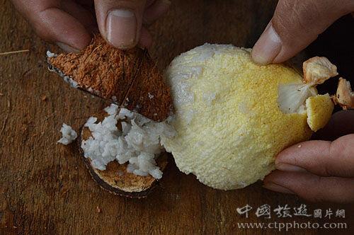 从老椰子里取出淡黄色的椰肉 刮取表面的油块 就能涂抹在身上防晒