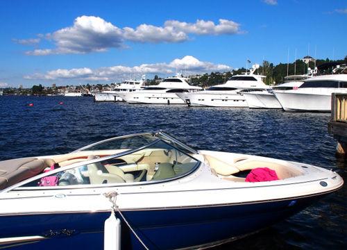 西雅图海港鸭子船