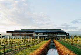 新西兰葡萄佳酿地