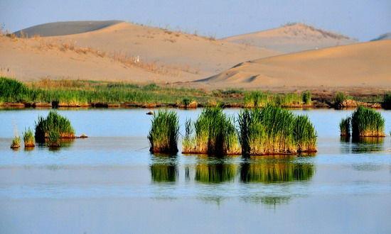 湖边的沙漠