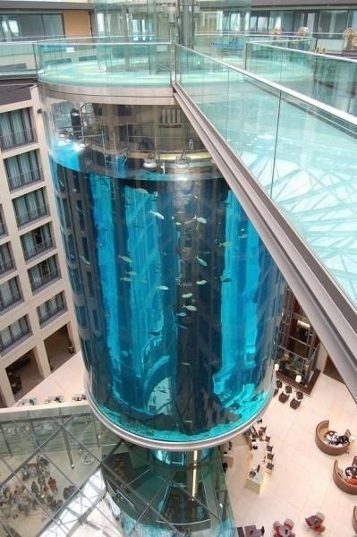 德国柏林的巨型鱼缸电梯