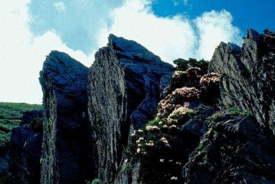 延绵的山峰有着美丽的线条