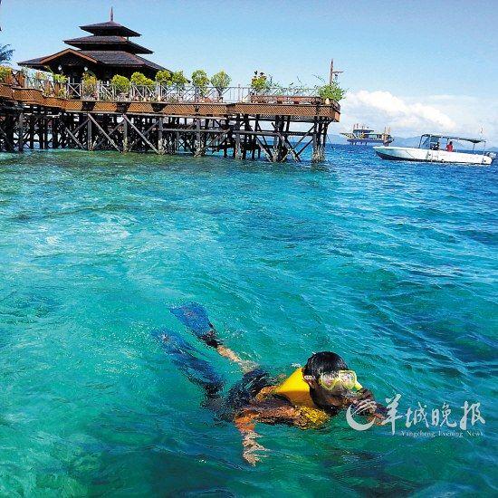 在仙本那的海域里浮潜是必做的项目
