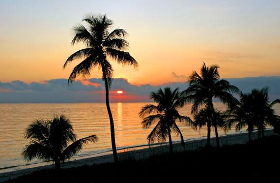 佛罗里达州的萨尼贝尔岛