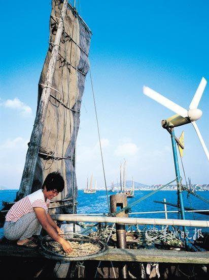 渔民在自家的木桅帆船上拾掇一早收获的太湖白虾