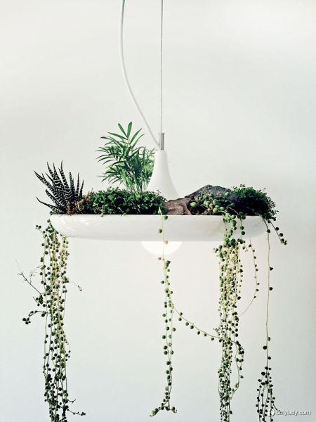 组图:巴比伦灯打造你的迷人空中小花园