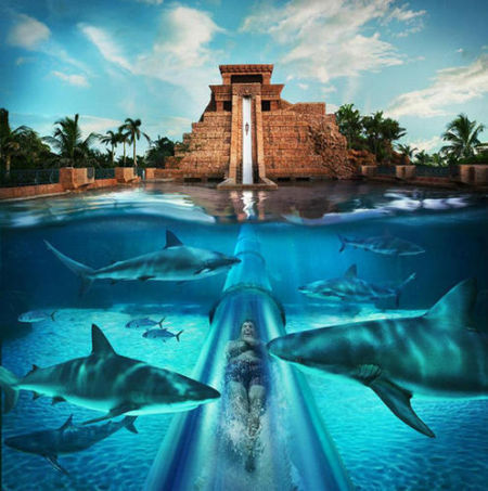 Aquaventure水上乐园