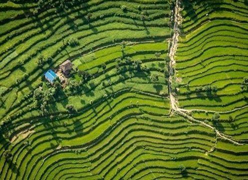 尼泊尔的梯田俯瞰图