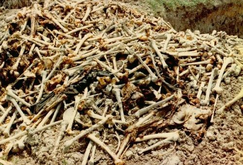 堆砌成山的尸骨