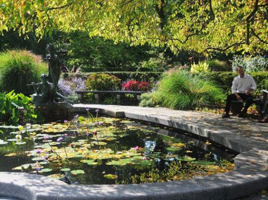 中央公园的温室花园