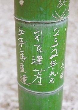 杭州·情侣连续六年在黄龙洞圆缘民俗园刻字表白