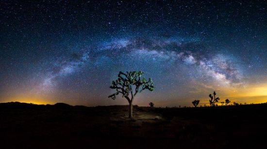 在美国加利福尼亚州约书亚树国家公园上空出现的银河系景观