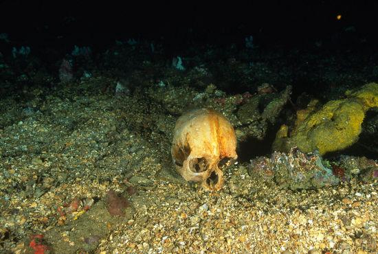 片中为二战期间日本爱国丸军舰的残骸,这其中还包括一位日本士兵的头骨
