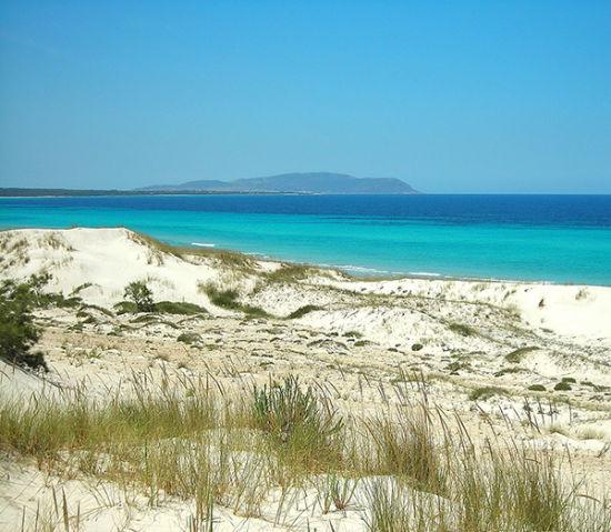 突尼斯El Hawaria沙滩