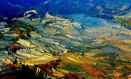 红河哈尼水稻梯田