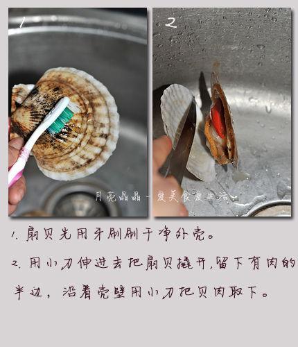 清洗扇贝的方法