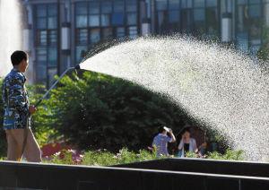 天气炎热,天一广场,有人在给花卉浇水。记者 唐严 摄