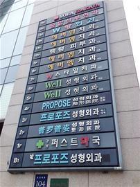 韩国每天造6000美女整脸整私处受欢迎(组图)