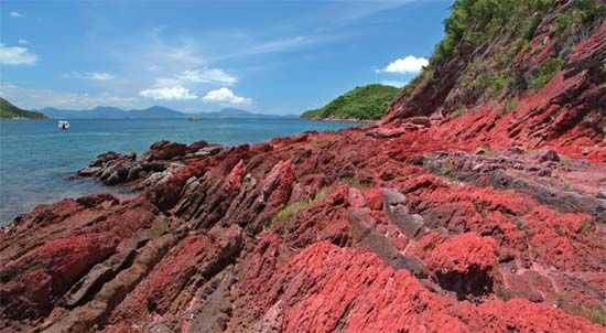 红色的岩石