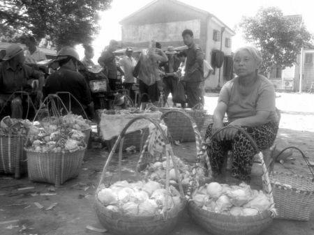 桃农葛宝娥在卖桃。记者 毛信意 摄