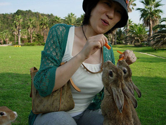 游客和兔子嬉戏