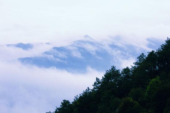 四明山上云雾缭绕