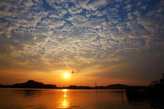 鸣鹤之晨 摄影:江南旧影