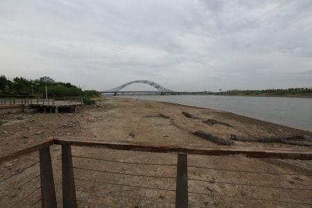 8月18日下午,由于此前持续高温干旱,姚江水位急剧下降,在湾头大桥附近有大片河床裸露