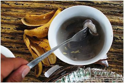 菲律宾-木蛀虫