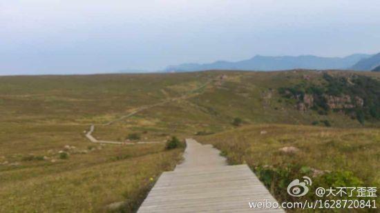 山顶草甸通幽小路