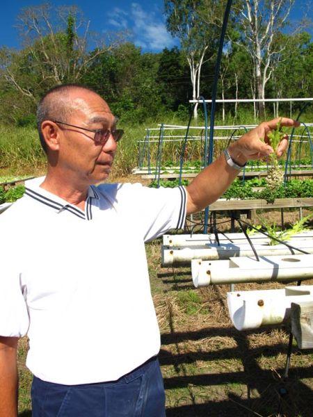 Lettuce & Herb Hydroponic Farm