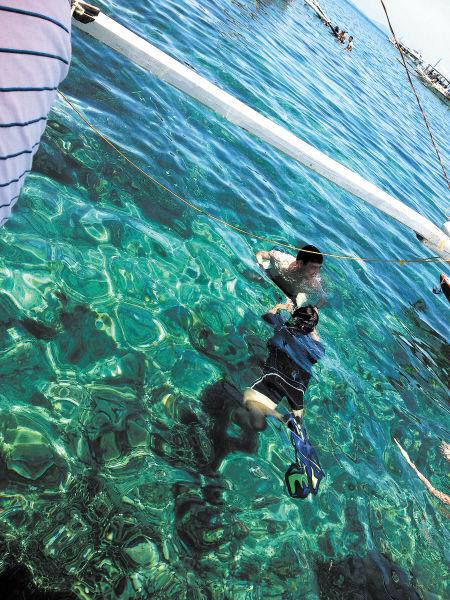 浮潜于浅海,不但可看到珊瑚、海石花,还可看到五彩斑斓的海鱼。
