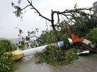 天兔狂袭广州致25人遇难粤东地区受重创