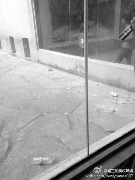 游人向动物园的动物栖息地投掷的矿泉水瓶、牛奶盒等垃圾。网友微博图片