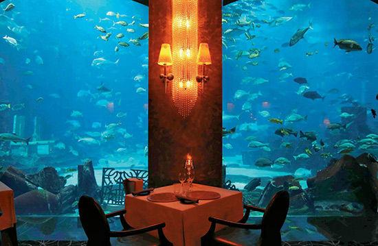 迪拜海底餐厅沉没在海底的饕餮盛宴(组图)