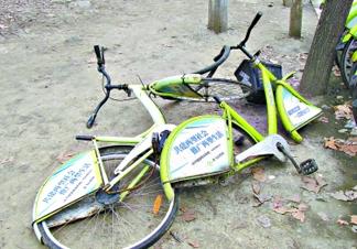 上路才一月 宁波13%的公共自行车已损坏