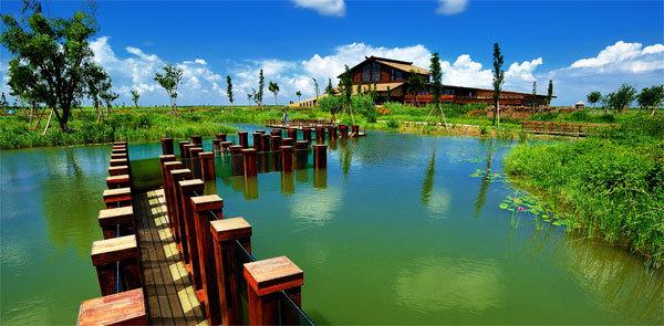 杭州湾湿地五磊寺一日游