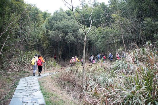 九龙湖游步道