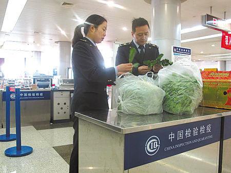 宁波空港首次截获大量入境蔬菜