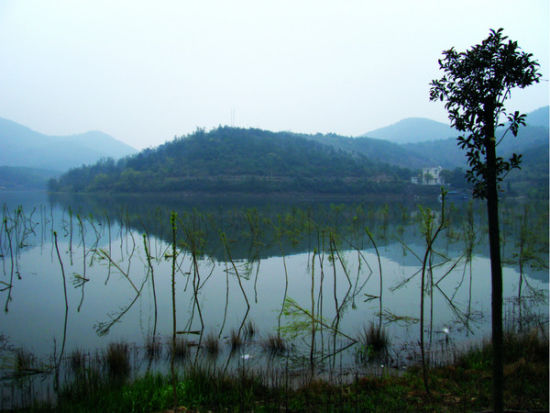 上林湖越窑址