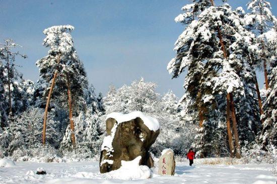组图:到长白山去听雪感受隆冬的冰雪童话世界