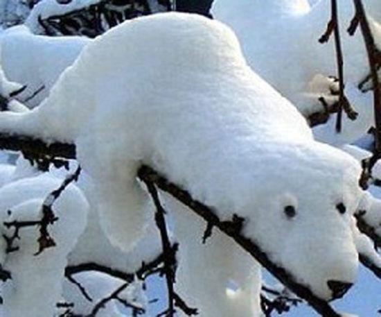 四明山雪景艺术