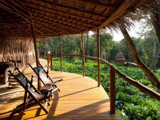 刚果热带雨林行