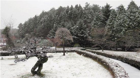 四明山雪景