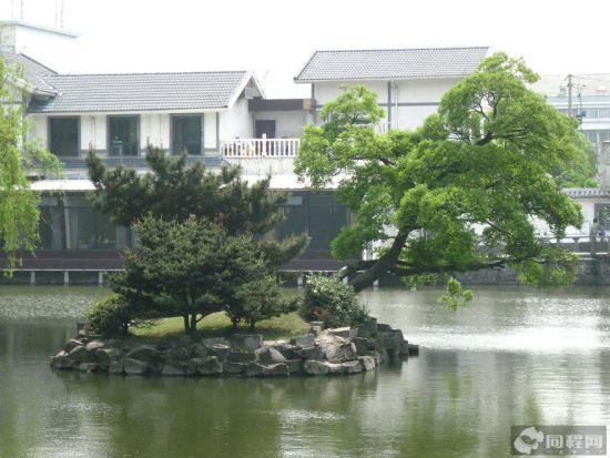 满池的春色,绿意黯然
